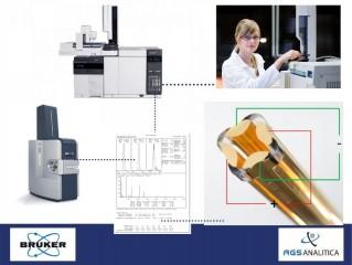 Entrenamiento Online: Espectrometría de Masas